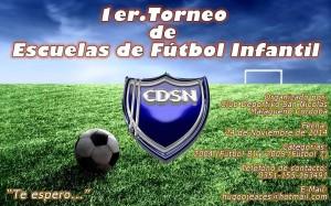 Torneo de Escuelas de Futbol Infantil