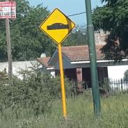 Lomadas en la calle principal